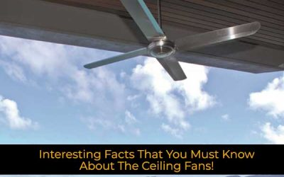 Interesting Facts That You Must Know About The Ceiling Fans!